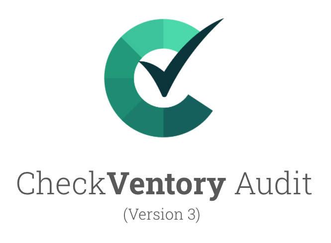 CV Audit v3